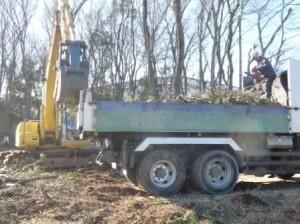 伐採工事,山林伐採伐根,積込